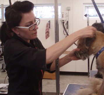Our Latest two Grooming Students Graduate with Flying Colours!